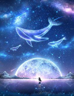 Фото Девушка стоит на берегу водоема, любуясь китами в ночном небе, by CZY