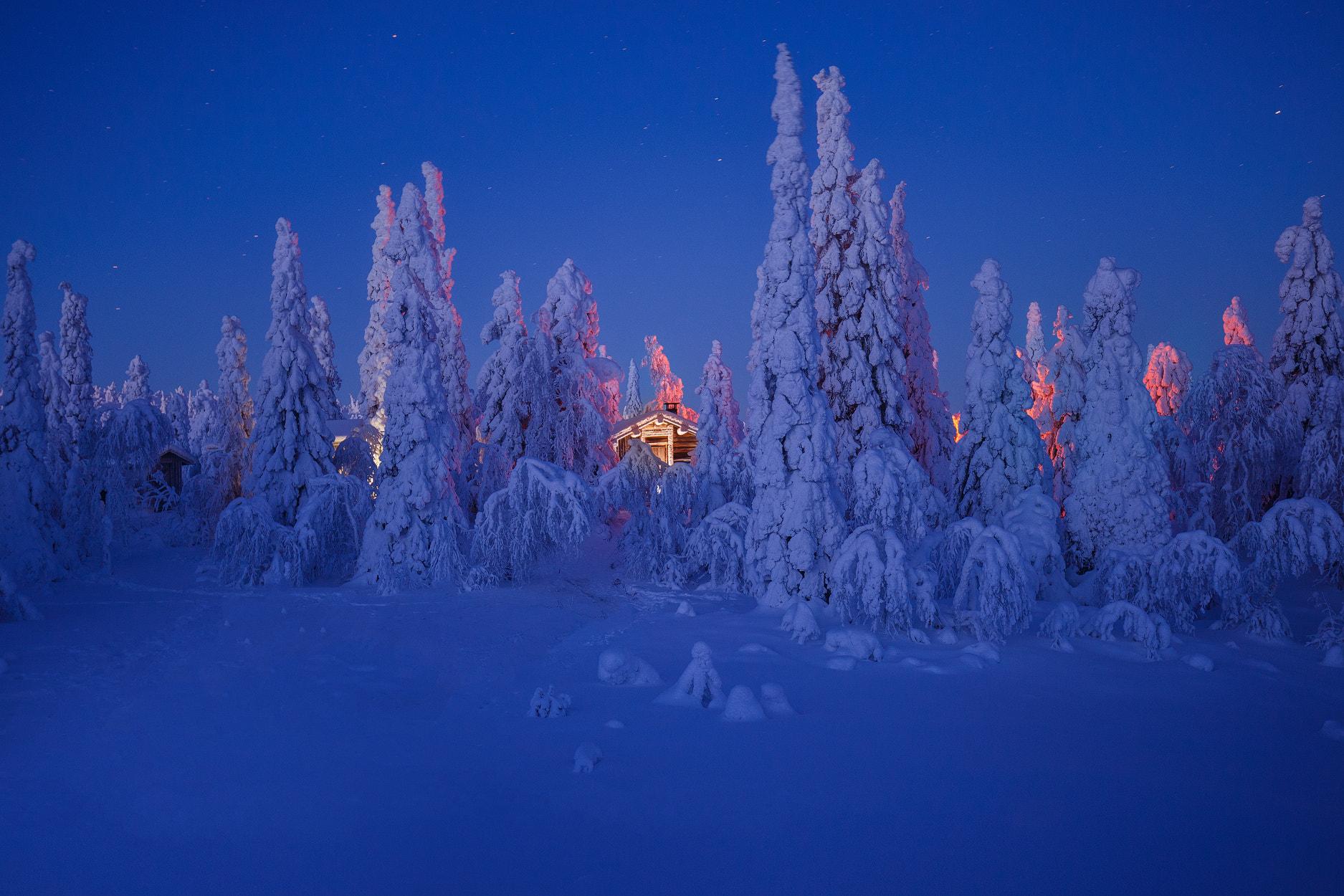 Расчудесный зимний вечер -звёздных высей благодать... фотограф не Andrew Bazanov
