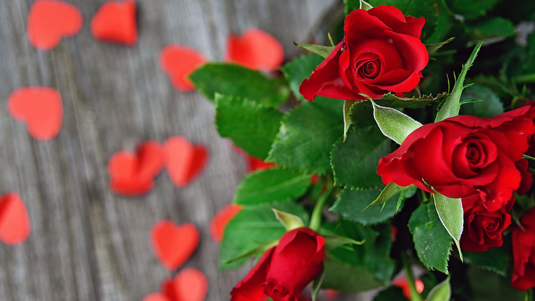 Алые розы и бумажные сердечки на размытом фоне. Фотограф Gаbor Adonyi