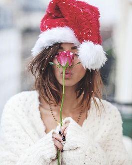 Фото Девушка в новогоднем колпаке с розой в руке