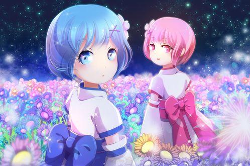 Фото Дети Rem / Рем и Ram / Рам на сказочной цветочной поляне арт аниме Re: Zero kara Hajimeru Isekai Seikatsu / Re: Жизнь в альтернативном мире с нуля