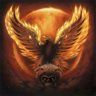 Фото Феникс с распахнутыми огненными крыльями сидит на черепе