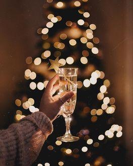 Фото В руке девушки бокал шампанского на фоне светящейся елки, by anamarkovych