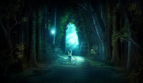 Фото Девочка с котенком стоят между огромными деревьями, by ElenaDudina