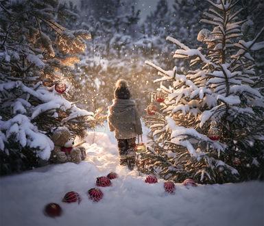 Фото Мальчик с баночкой в зимнем лесу, by Elena Shumilova