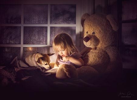 Фото Девочка со щенком сидит рядом с игрушечным мишкой, by Jessica Drossin