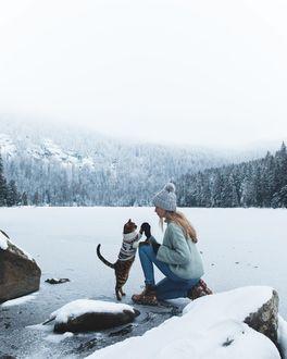 Фото Кошка, одетая в вязанный свитер дает пять своей хозяйке, by Laura Vilser
