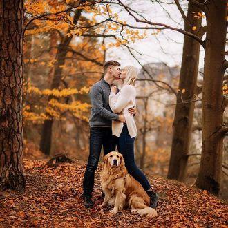 Фото Золотистый ретривер Максимус сидит перед его хозяйкой Юлией с парнем