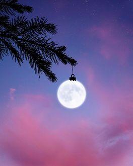 Фото Луна висит на еловой ветки, как новогодняя игрушка, by LГўn Nguyen