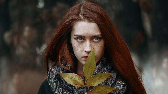 Фото Модель Даша с осенним листком, by Andrey Metelkov