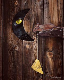 Фото Кот смотрит на мышь с сыром в щелку в форме месяца, by Stephanie Paquot