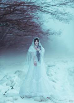 Фото Девушка в длинном платье стоит на снегу, фотограф Светлана Беляева