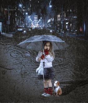 Фото Девочка и собака под зонтом стоят в вечернем городе под дождем