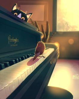 Фото Кошка смотрит на птичку, стоящую на клавишах рояля, by Margherita Magy Grasso