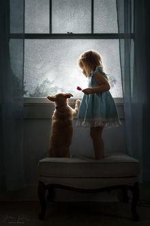 Фото Девочка стоит рядом с собачкой у окна, фотограф Jessica Drossin