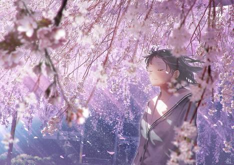 Фото Девушка под цветущей сакурой, by mocha (© chucha), добавлено: 09.02.2019 12:20