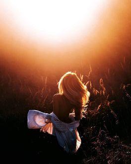 Фото Девушка с обнаженной спиной освещенная солнцем (© Margo Fly), добавлено: 10.02.2019 01:31