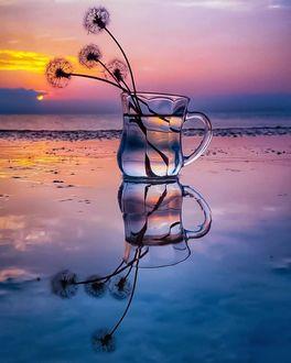 Фото Одуванчики в стеклянной кружке стоят на мокрой поверхности