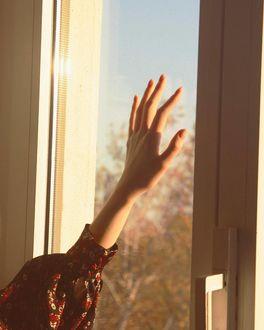 Фото Рука девушки на стекле окна