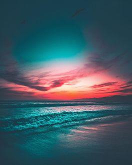 Фото Чайки в закатном небе над морем, by J Camacho