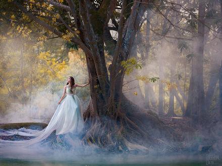 Фото Девушка в длинном белом платье стоит у дерева