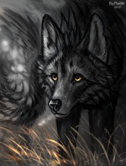 Фото Simuran, волк с желтыми глазами, by FlashW