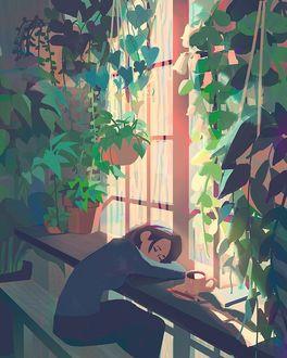 Фото Девушка спит, сидя у окна