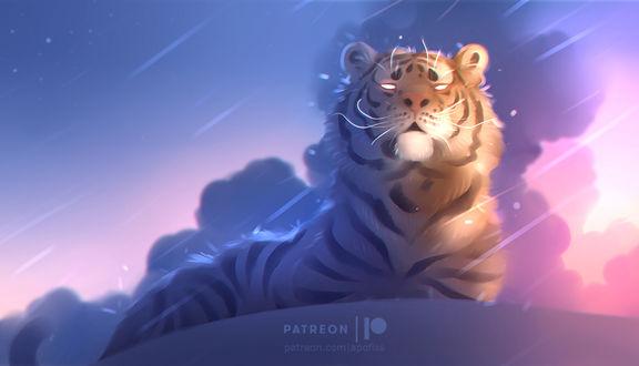 Фото Тигр со светящимися глазами под дождем, by Apofiss