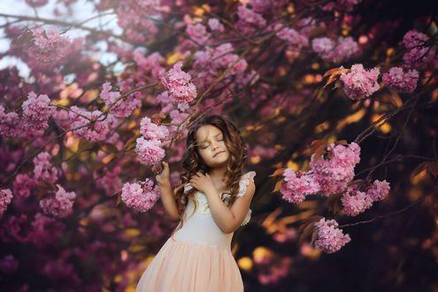 Фото Девочка стоит у весеннего цветущего дерева