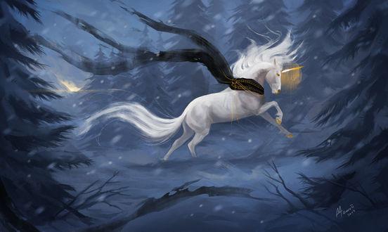 Фото Единорог в зимнем лесу, by Memuii