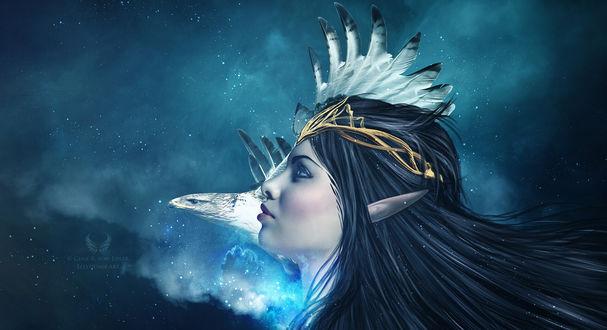 Фото Девушка-эльф и птица в профиль, by Ellysiumn Art