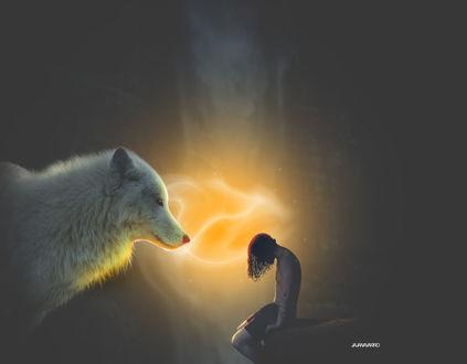 Фото Парень сидит перед белым волком на фоне желтой субстанции, by jajanavarro