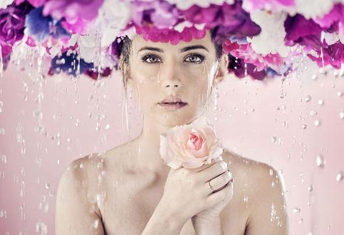 Фото Девушка с розой в руке