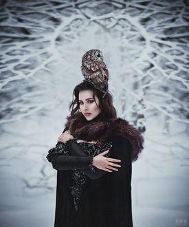 Фото Девушка с совой на голове, фотограф Светлана Беляева