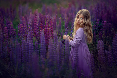 Фото Милая девочка стоит среди люпинов, by Kate BLC