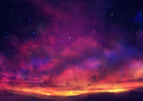 Фото Птицы в закатном небе, by Erisiar