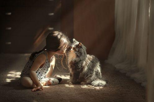 Фото Девочка сидит перед кошкой на полу, фотограф Елена Миронова