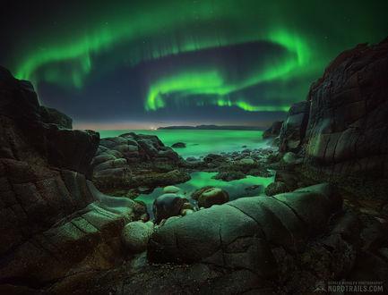 Фото Северное сияние на небе, Кольский полуостров, фотограф Королев Сергей