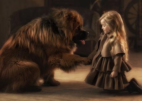 Фото Девочка держит собаку за лапу. Фотограф Мытник Валерия