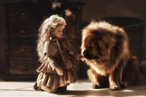 Фото Девочка сидит на полу перед собакой. Фотограф Мытник Валерия
