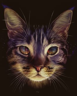 Фото Портрет кошки с космическими глазами, by Elena Masci