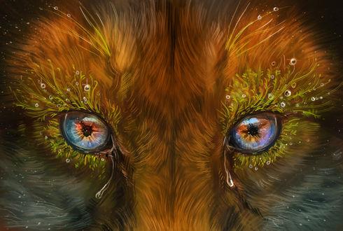 Фото Мордочка лисы, с глазами окруженными травой, из которых текут слезы, by Maquenda