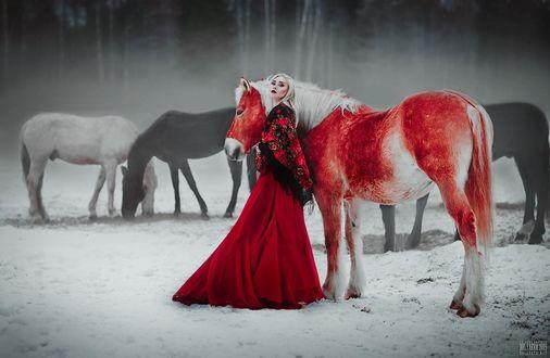Фото Девушка стоит рядом с лошадью, фотограф Светлана Беляева