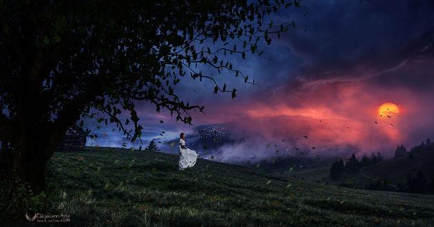 Фото Девушка в белом длинном платье стоит на зеленой траве на фоне заката, by Gene Raz von Edler