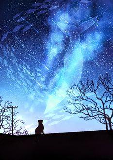 Фото Кошка смотрит на кита и косяк рыб в ночном небе, by JW