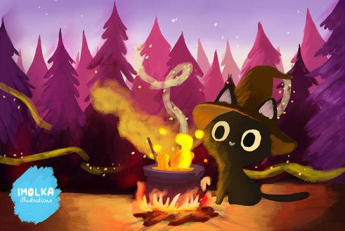 Фото Черный котенок в ведьменской шляпе варит зелье в ночном лесу, by imolka
