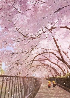 Фото Мальчик и девочка идут по дороге под цветущими вишнями, by Kupe