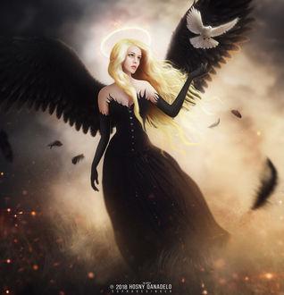 Фото Девушка - черный ангел с белым голубем, by Hosne Qanadelo