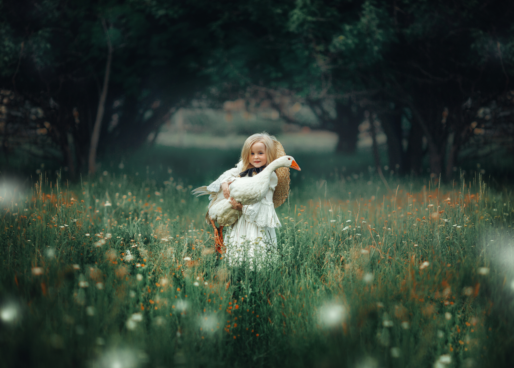 Фото Девочка с гусем на руках стоит на поляне, фотограф Мытник Валерия