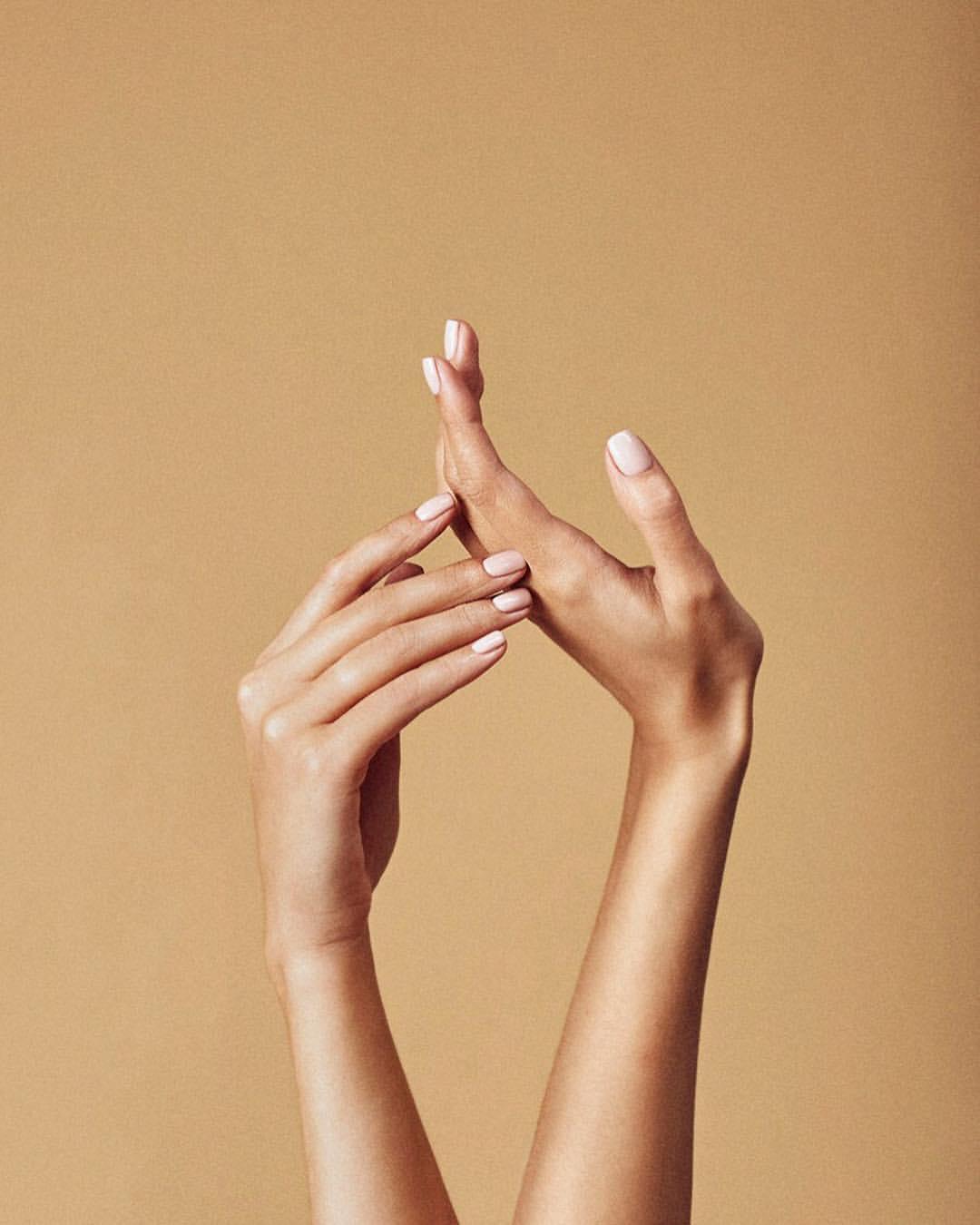 дополнительной картинка с женскими руками особый вид ежиков